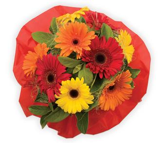 Order Flowers For Get Well Soon