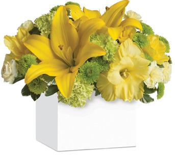 Send Flowers For Happiness