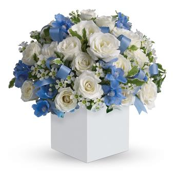 Buy Flowers For Baby Boy Born