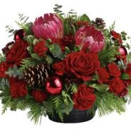 red flowers for xmas
