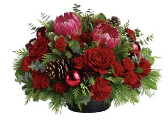 Send Red Flowers For Xmas