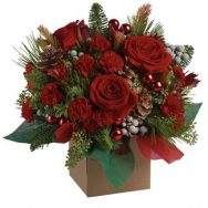 best flowers for xmas