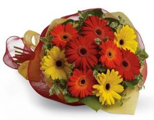 flowers for quick recovery