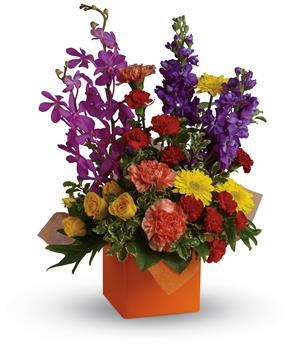 Send Flower Box Arrangements