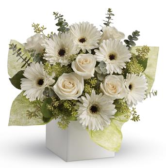 Send Flowers To Say Sorry For Your Loss